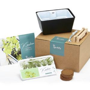 Keuken kruiden Plant box