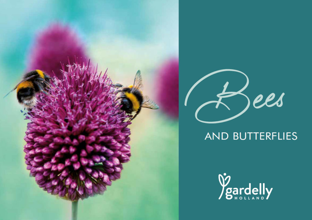 Leaflet Bees and butterflies