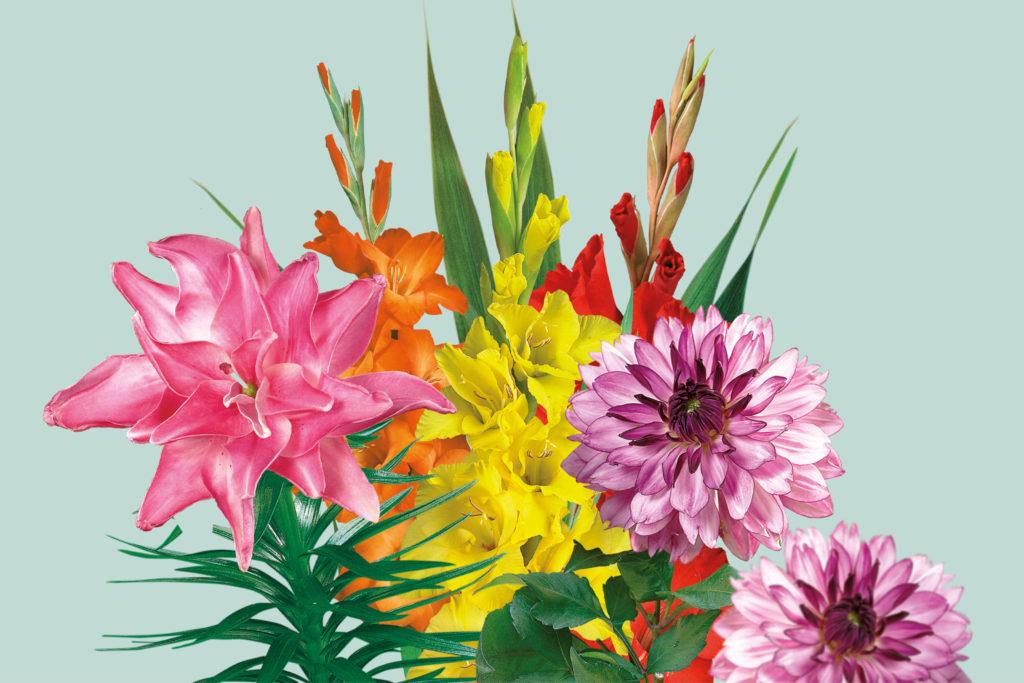 lelies, dahlia's, gladiolen,